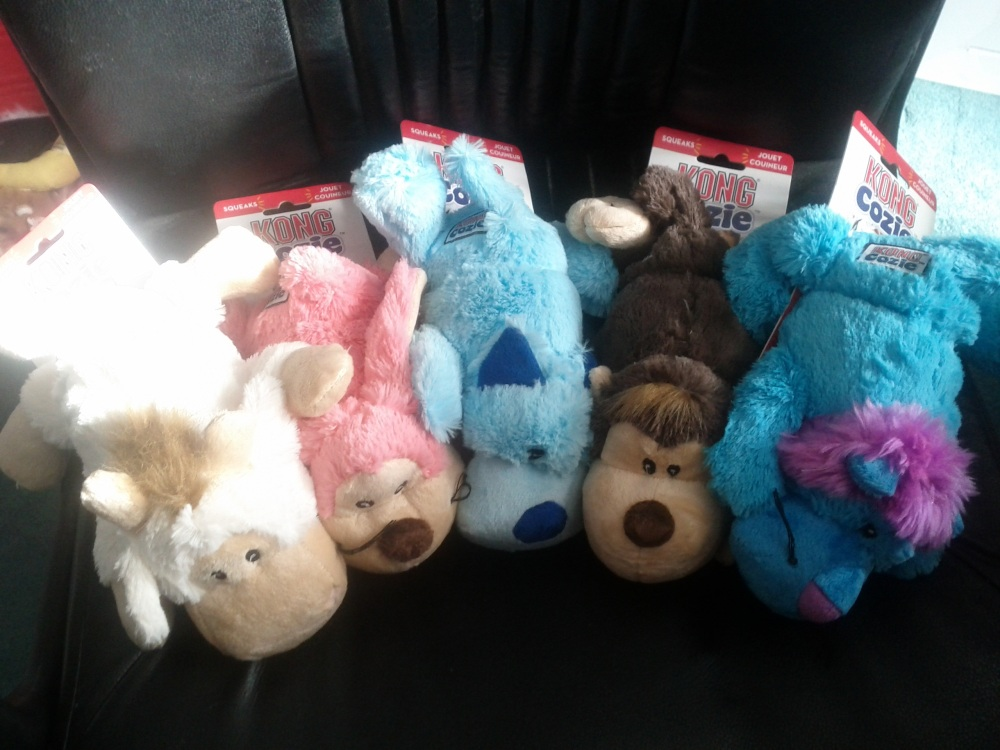 You Can Get Cozy With KONG Cozies!  A Give-Away! (2/6)