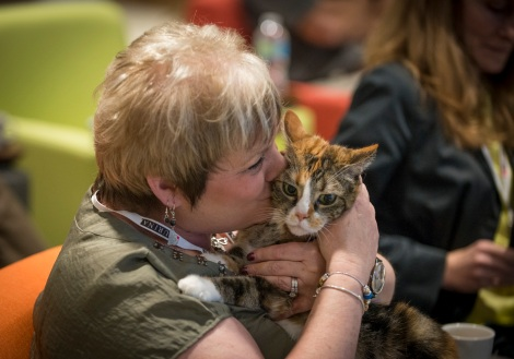 """The """"Meet Purina"""", Purina Blogger Summit at Nestlé Purina HQ in St. Louis. That's me! Photo taken by Purina"""