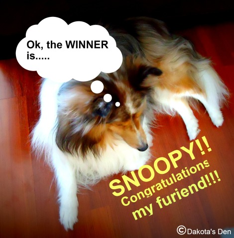 Click on the photo to visit Snoopy's blog!