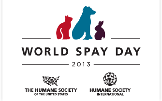 World Spay Day logo