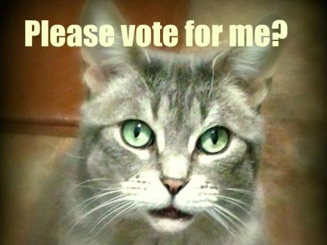 cody please vote