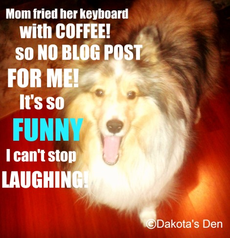 dakota mom fried keyboard