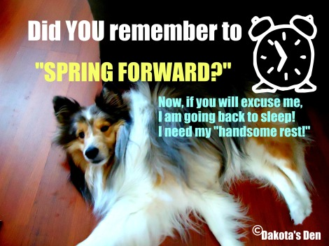 dakota spring forward