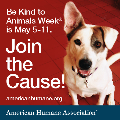 Click on the photo to visit the American Humane  Association website
