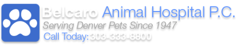 Logo courtesy of Belcaro Animal Hospital