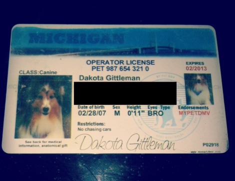 Dakota drivers license