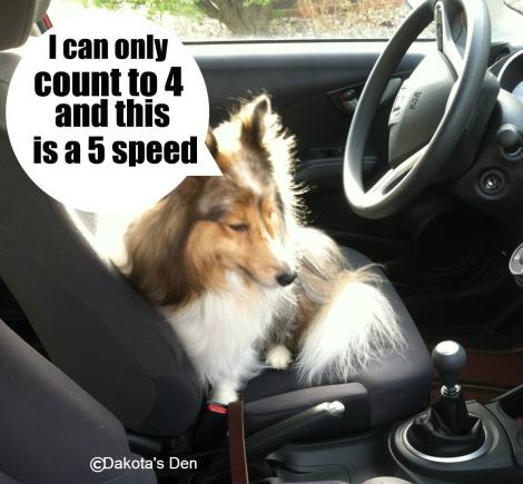 dakota driving 1